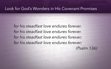 Psalm 136 wonders