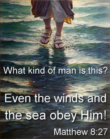 Matthew 8 Jesus is.jpg