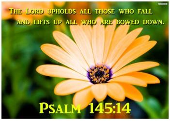 Psalm 145 14