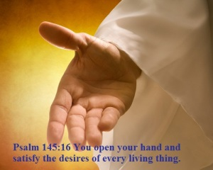 Psalm 145 16
