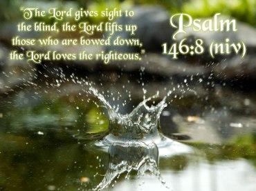Psalm 146 8