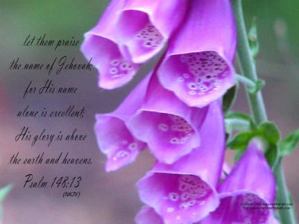 Psalm 148 13