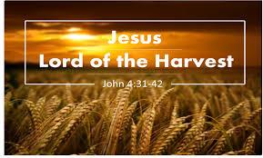 Matthew 9 Jesus Lord