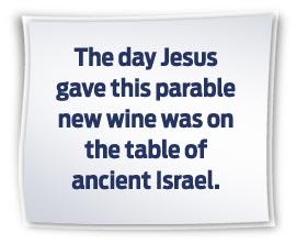 Matthew 9 new wine