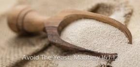 matthew-16-yeast-rising.jpg