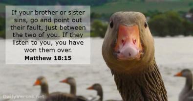Matthew 18 15 won