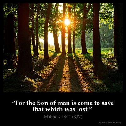 Matthew 18 Son