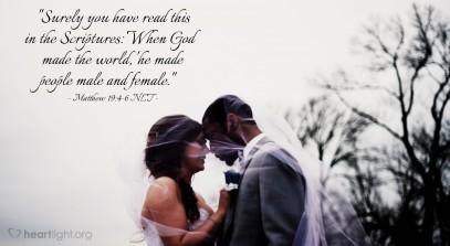 Matthew 19 marriage.jpg