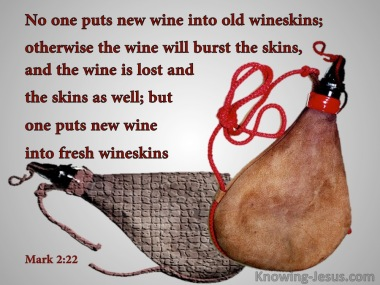 Mark 2 wineskins