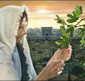 Mark 11 figs and unfaithful