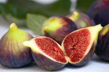 Mark 11 fruit