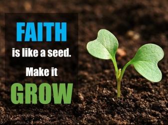 mark-4-growing-faith.jpg