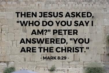 Mark 8 29