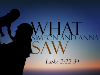 Luke 2 what they saw