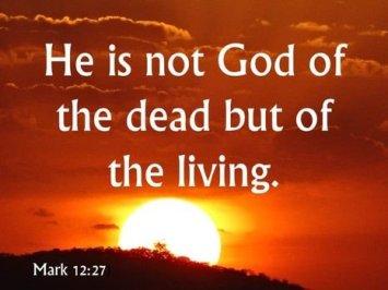 Mark 12 living