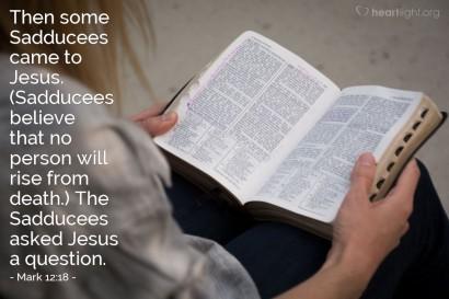 Mark 12 Sadducees