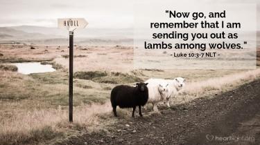 Luke 10 lambs