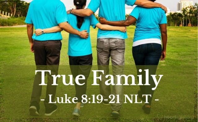 Luke 8 true family