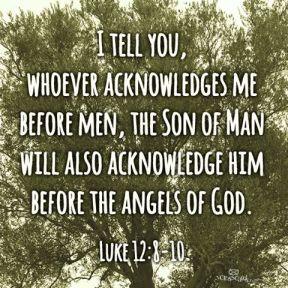 Luke 12 acknowledge