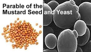 Luke 13 seed and yeast