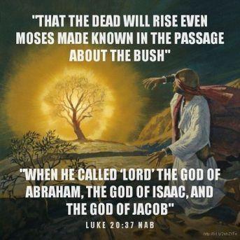 Luke 20 Moses