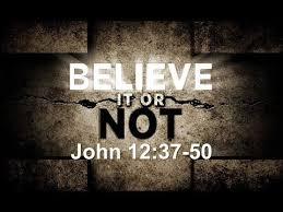 John 12 believe it