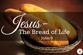 John 6 of life