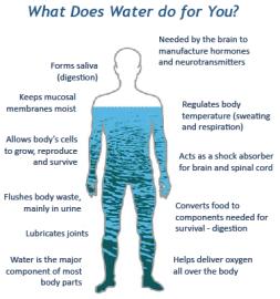 Genesis 1 water in us
