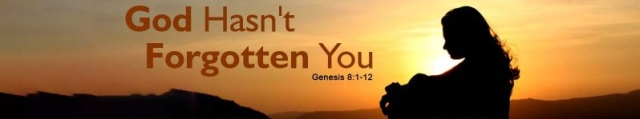 Genesis 8 God hasnt forgotten you