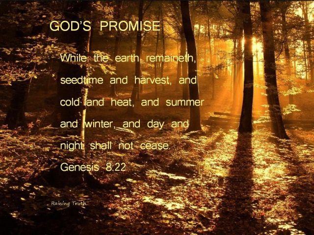 Genesis 8 promise
