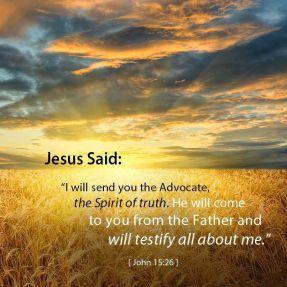 John 15 advocate