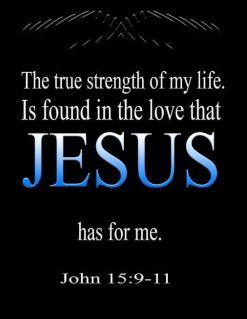 John 15 love of Jesus