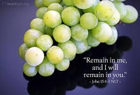 John 15 remain in me