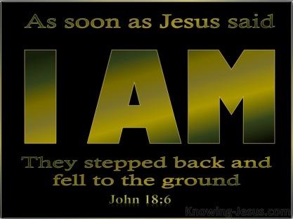 John 18 6