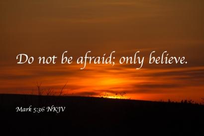 Genesis 15 only believe