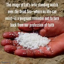 Genesis 19 salty