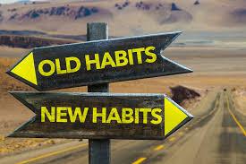 Genesis 20 habit