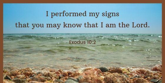 Exodus 10 know