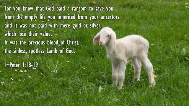 Exodus 10 lamb of God