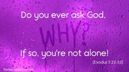 Exodus 5 why God