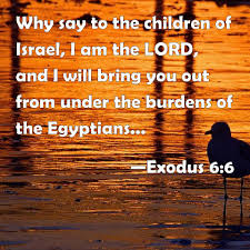 Exodus 6 bring you out