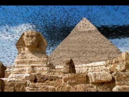 Exodus 8 flies swarm
