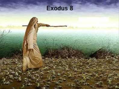 Exodus 8 Moses