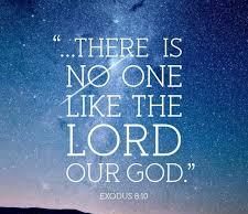 Exodus 8 no one like