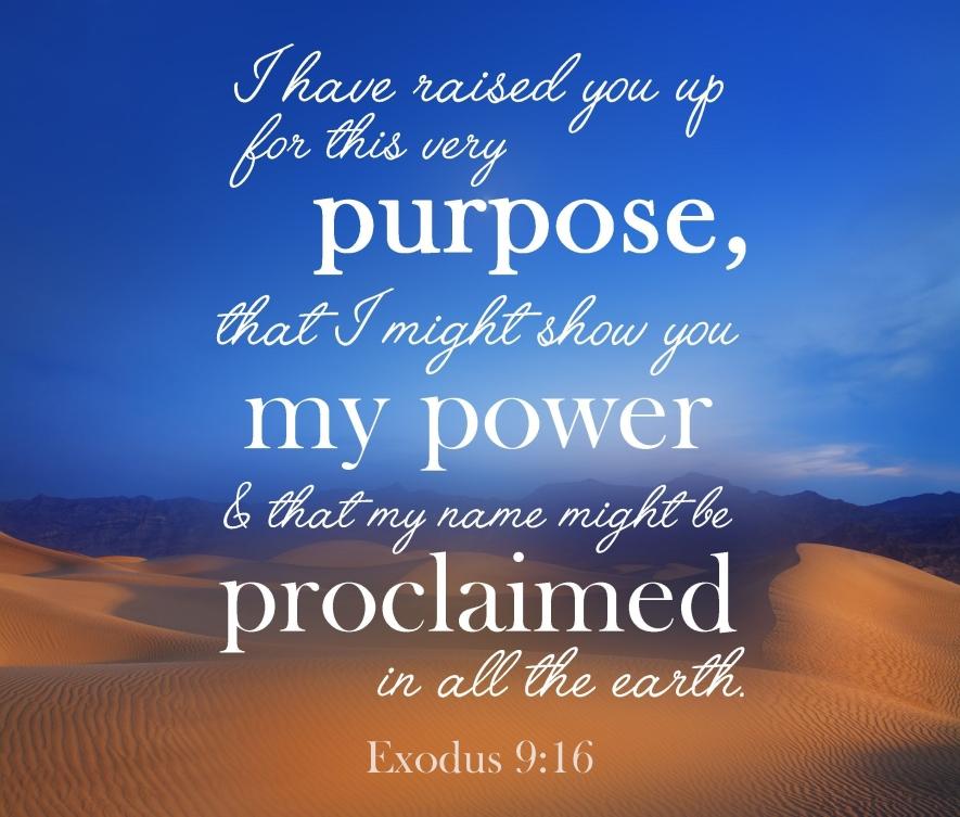 Exodus 9 God's power