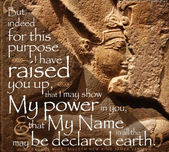 Exodus 9 power