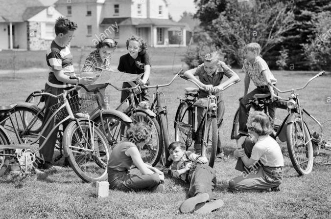 Genesis 35 bikes