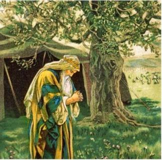 Genesis 35 the tree