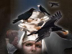 Genesis 40 birds