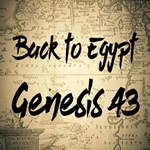 Genesis 43 back to